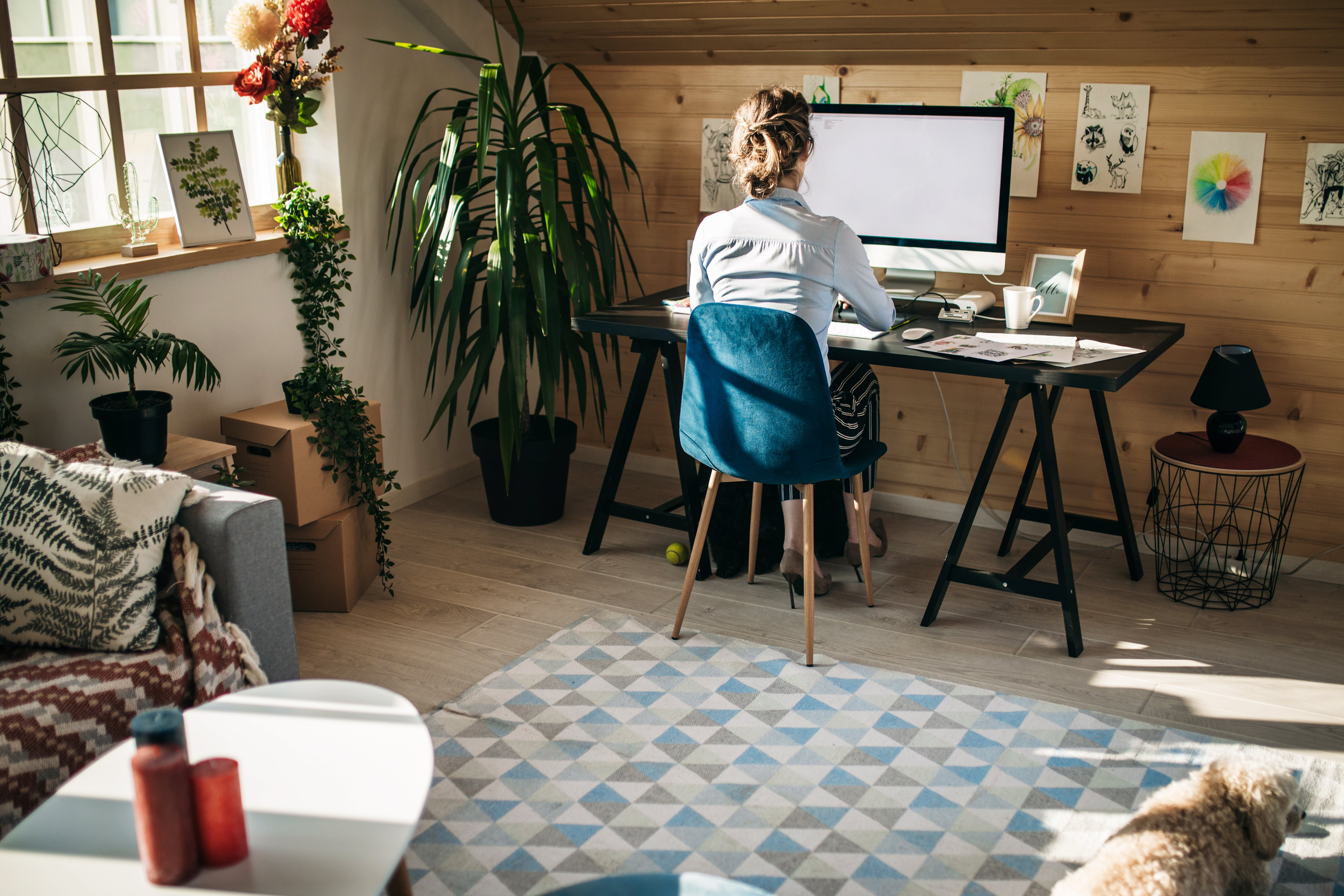 Creating a Healthy Work Environment  at Home